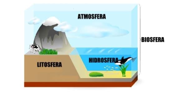 Imagem-ou-esquema-as-4-esferas-que-compõe-o-meio-ambiente-litosfera-solo-e-relevo-atmosfera-ar-hidrosfera-oceanos-e-mares-e-biosfera-seres-vivos