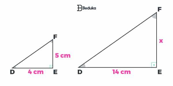 Exemplo de Semelhança de Triângulos (LAL)