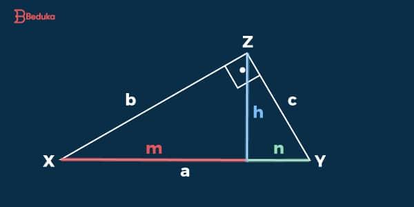 Representação do Triângulo Retângulo