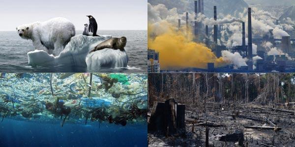 problemas-amientais-aquecimento-global-que-derrete-gelereiras-e-extingue-animais-polares-poluição-da-água-com-lixos-e-poluição-do-ar-com-fumaça-de-indústrias-e-queimada-e-desmatamento