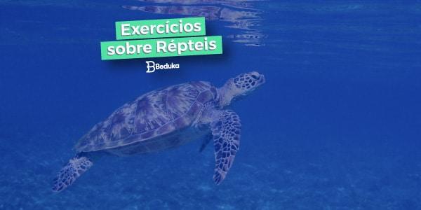 Exercícios sobre Répteis