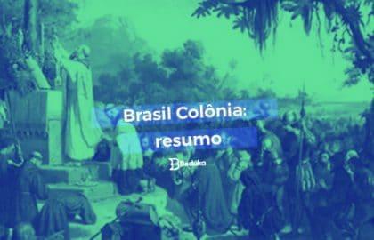 Entenda tudo sobre o Brasil Colônia !