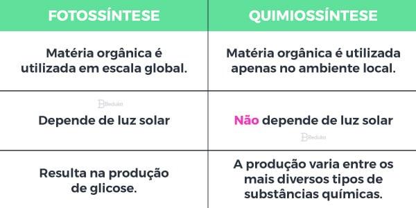 Comparação entre Quimiossíntese e Fotossíntese