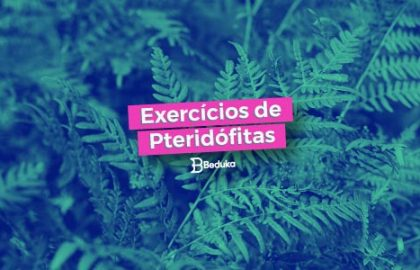 Exercícios de Pteridófitas