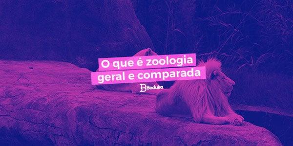 Entenda logo o que é Zoologia Geral e Zoologia Comparada!