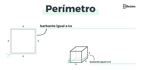 Como calcular perímetro?