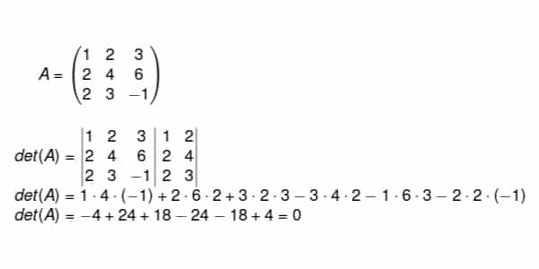 4ª-propriedade-linhas-iguais-ou-proporcionais-fazem-com-que-o-determinante-da-matriz-seja-igual-a-0.