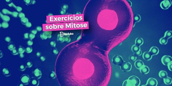 Exercícios sobre Mitose