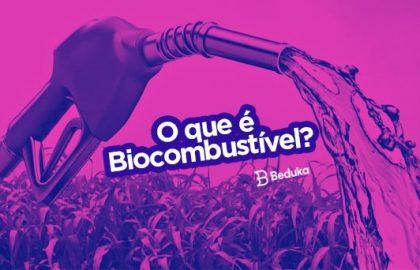 O Biocombustível no Brasil e no mundo: o que é, onde é usado, tipos, vantagens e desvantagens.