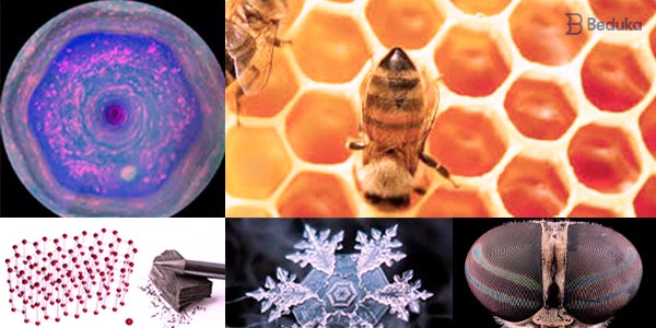 hexagono na natureza nuvens de saturno colmeia olho de inseto estrutura quimica do carbono cristal de gelo