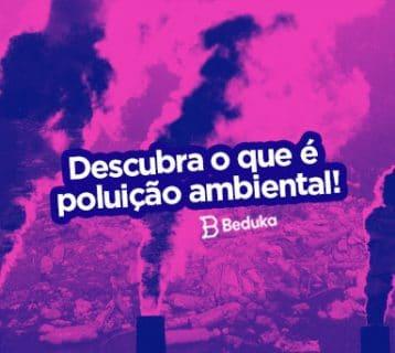 O que e poluiçao ambiental